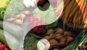Recommended_macrobiotic