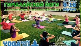 Upcoming_yoga_sochi_2016