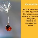 Thumb_Мотиватор26