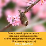 Thumb_Мотиватор158