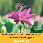 Thumb_Мотиватор205