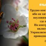 Thumb_Мотиватор220