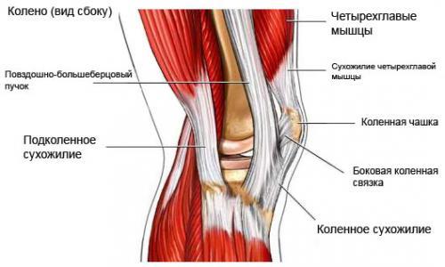 массаж ноги после перелома коленного сустава